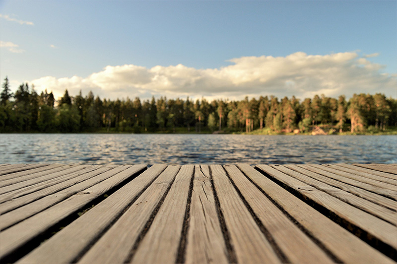 Marine Spider Control Made Easy: How to Keep Your Dock Pest